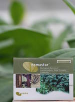 nemastar® for Beetle and Cutworm Control